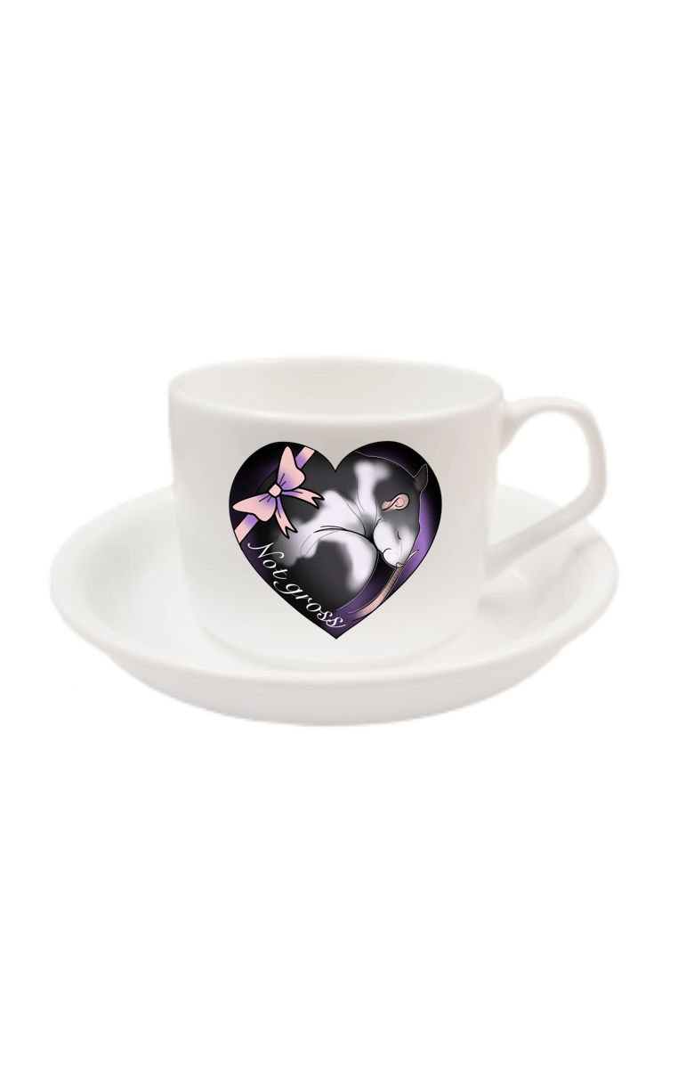 Not Gross Cup And Saucer RRP £9.99