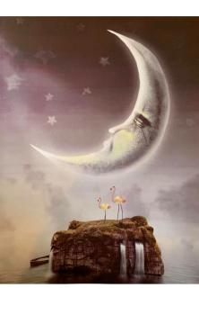 Moon Lagoon A4 Print