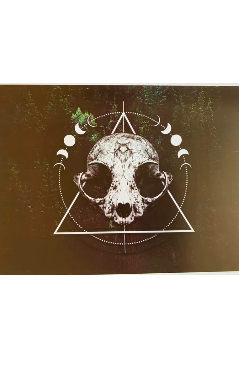 FOREST SKULL A4 Print RRP £4.99