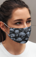 The Collector Face Mask