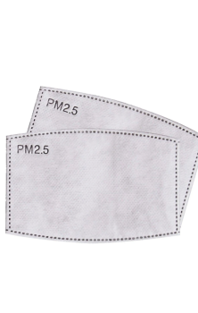 PM 2.5 Filters Replacements 2 pack #313-314