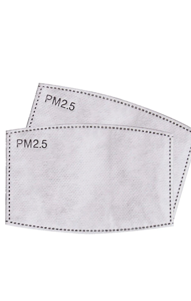 PM 2.5 Filters Replacements 2 pack