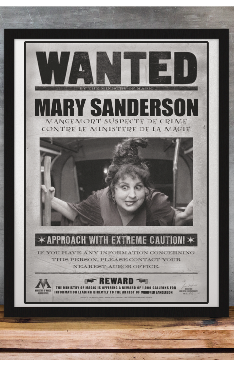 Wanted Mary Sanderson A4 Print RRP £4.99-£9.99