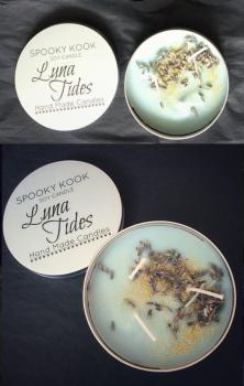 Luna Tides Candle #122