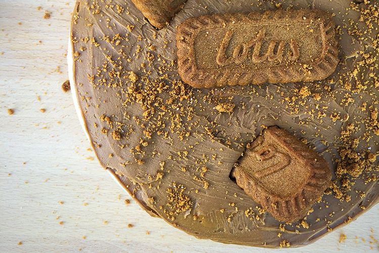 Lotus Biscoff Vegan Cheezecake topped with crumbs and biscuits