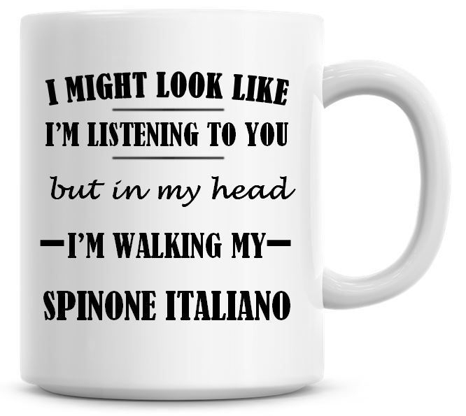 I Might Look Like I'm Listening To You But In My Head I'm Walking My Spinon