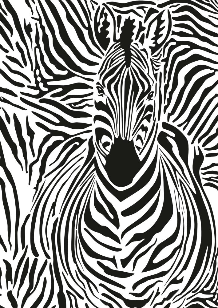 Zebra Camouflage image