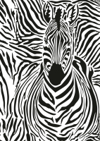 Screen Pal Screen Zebra Camouflage : SALE !