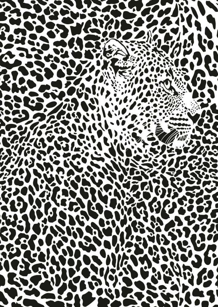 Leopard Camouflage image
