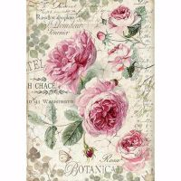 Stamperia : A4 Rice paper : Botanic English roses