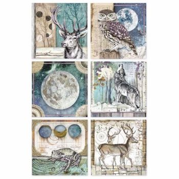 Stamperia : A4 Rice paper : Cosmos cards