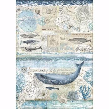Stamperia  A3 Rice paper Arctic Antarctic History of the Whale