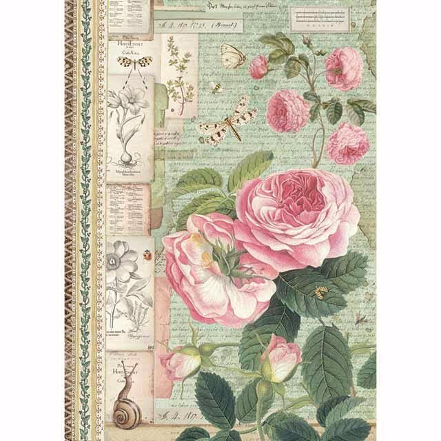 STAMPERIA A4 RICE PAPER :Botanic English Roses with snail