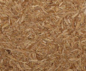 Apple Wood Chips - Apothecary Jar