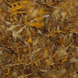 Herbs & Resins - Apothecary Range