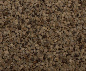 Agnus Castus Seed - Apothecary Jar
