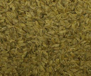 Fennel Seed - Apothecary Jar