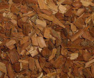 Oak Bark - Apothecary Jar