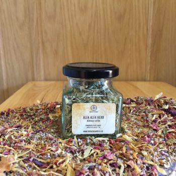 Alfa Alfa Herb - Apothecary Jar