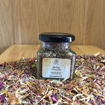 Aniseeds - Apothecary Jar