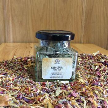 Boldo Leaves - Apothecary Jar