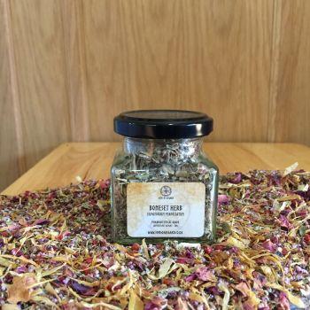 Boneset Herb - Apothecary Jar