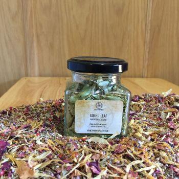 Buchu Leaf - Apothecary Jar