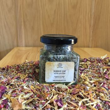 Burdock Leaf - Apothecary Jar