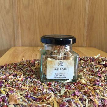 Cactus Flowers - Apothecary Jar