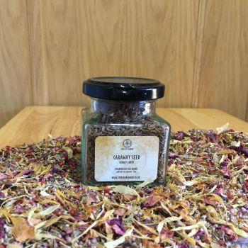 Caraway Seed - Apothecary Jar