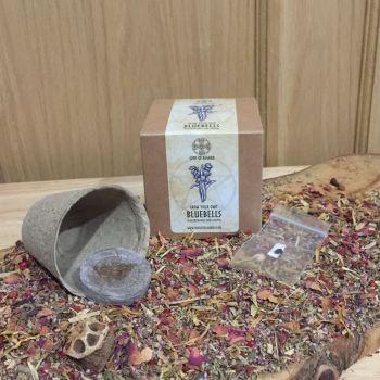 Bluebell - Mini Grow Box