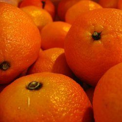 Clementine - Pure Essential Oil