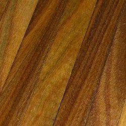 Guaiacum Wood - Pure Essential Oil