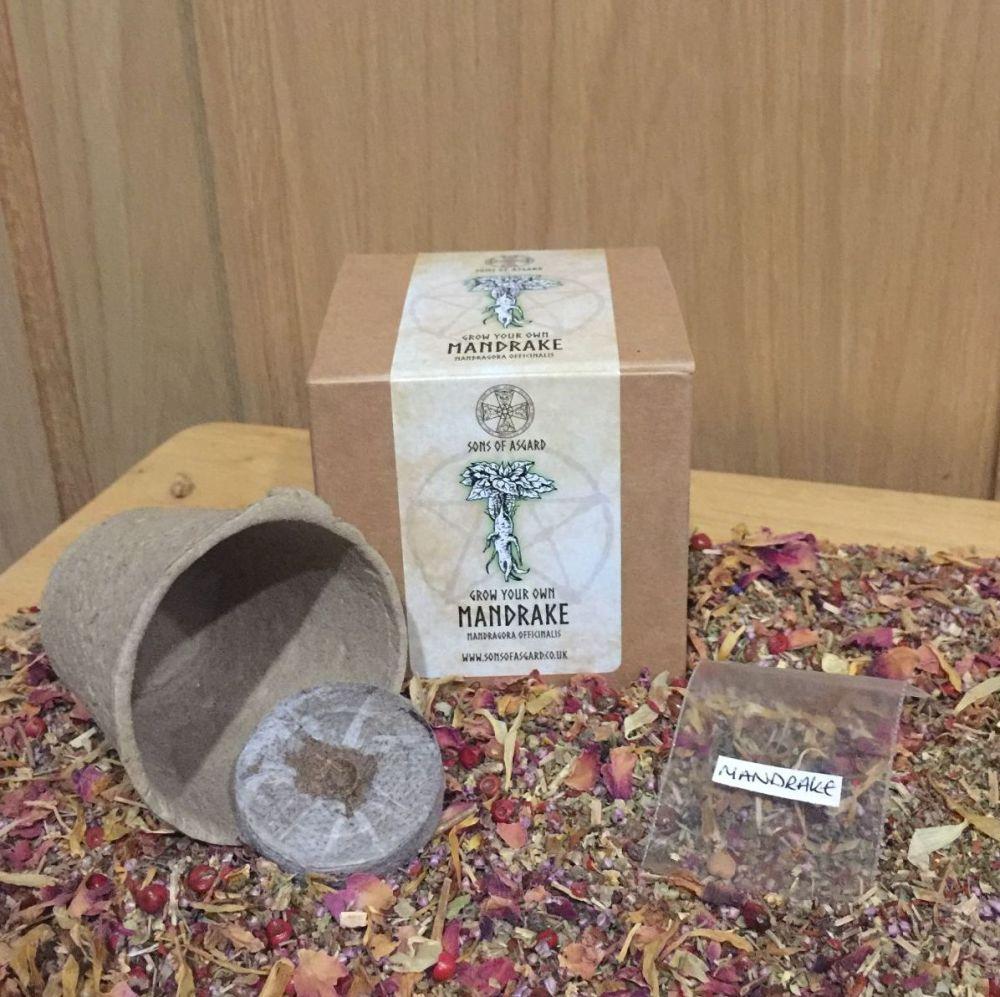 Mandrake - Mini Grow Box