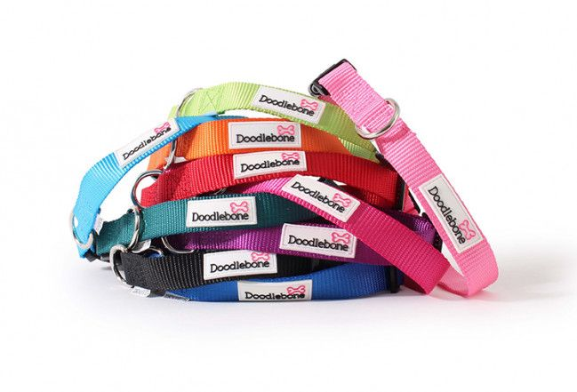 Doodlebone Collars