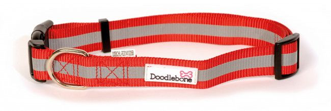 Bold Reflective Dog Collar - Extra Small