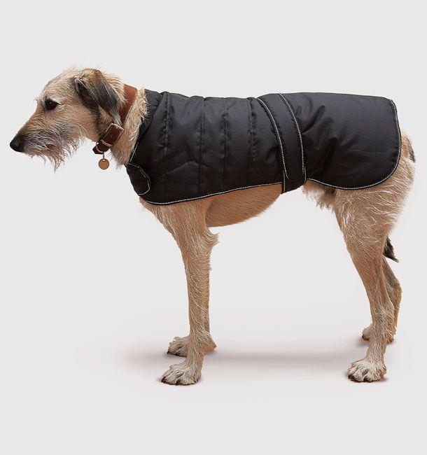 Black Harness Dog Coat 75cm (30