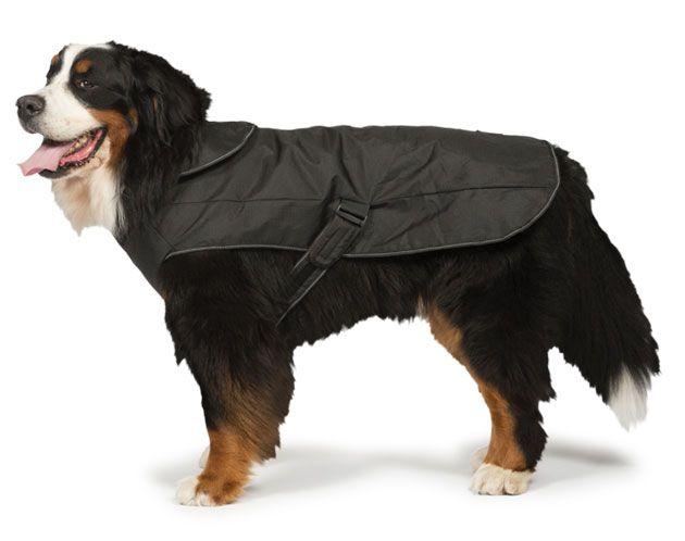 Black Harness 2 in 1 Ultimate Dog Coat