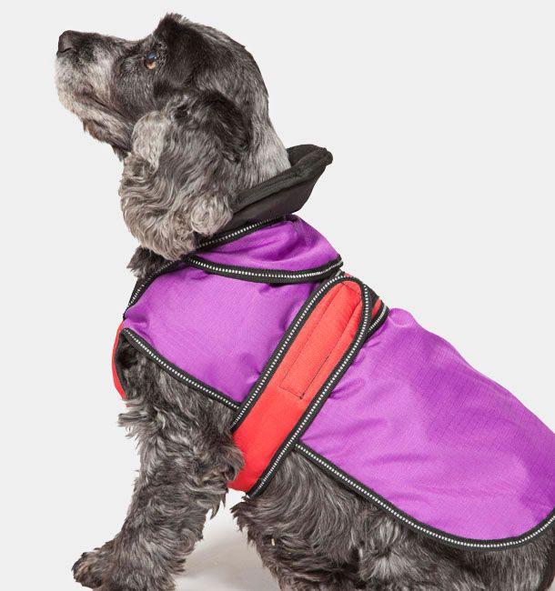 BLUE  2 in 1 Ultimate Dog Coat