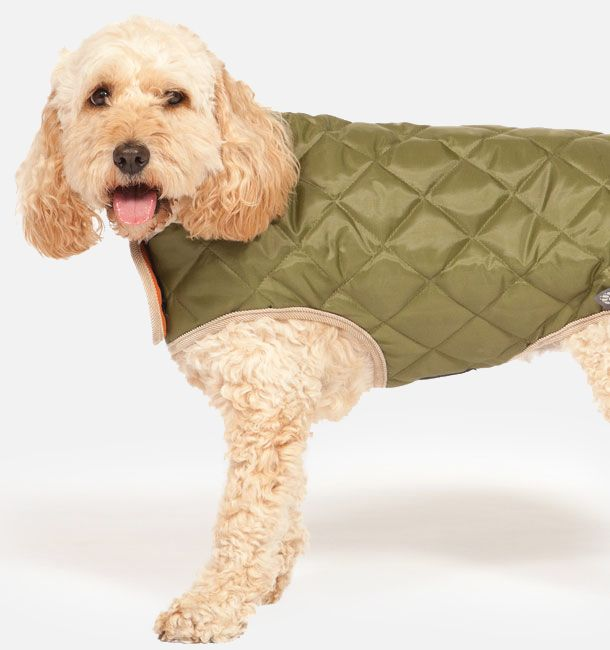 Forest Green Quilted Dog Coat 25cm (10