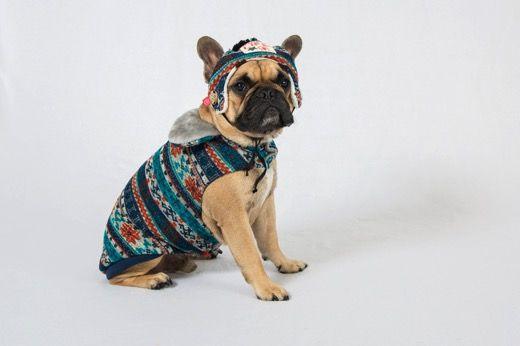 Dog's Life Winter Clothing Range