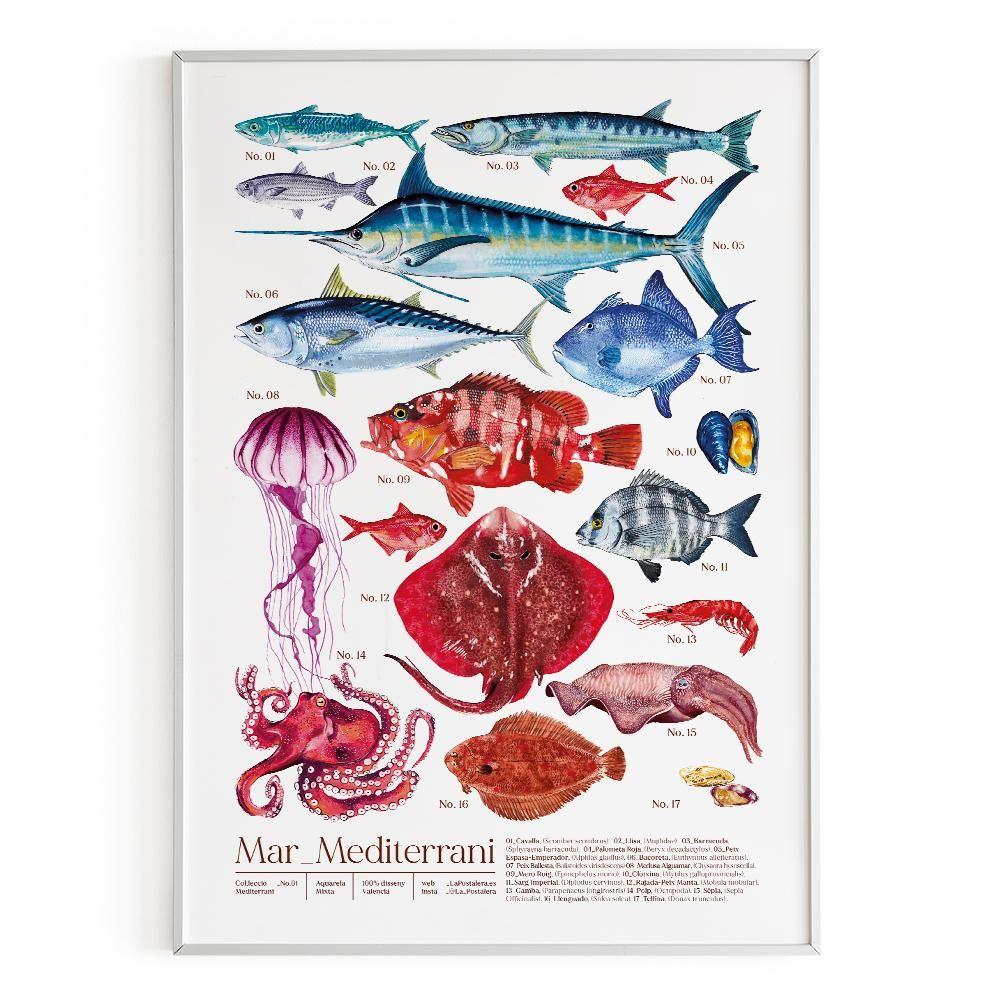 La Postalera : Art Poster. Mediterranean Sea Poster