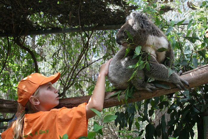 peel zoo 2.jpg