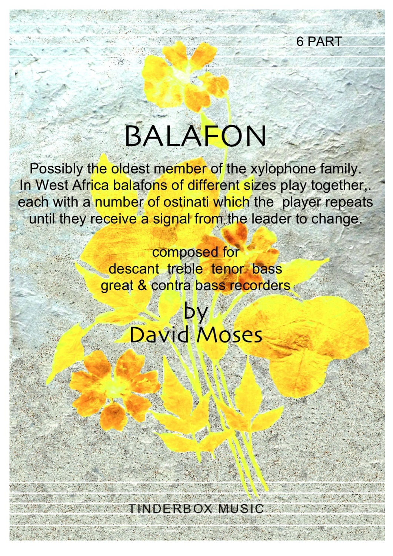 Balafon 6 part