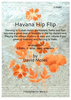 Havana Hip Flip   5 part