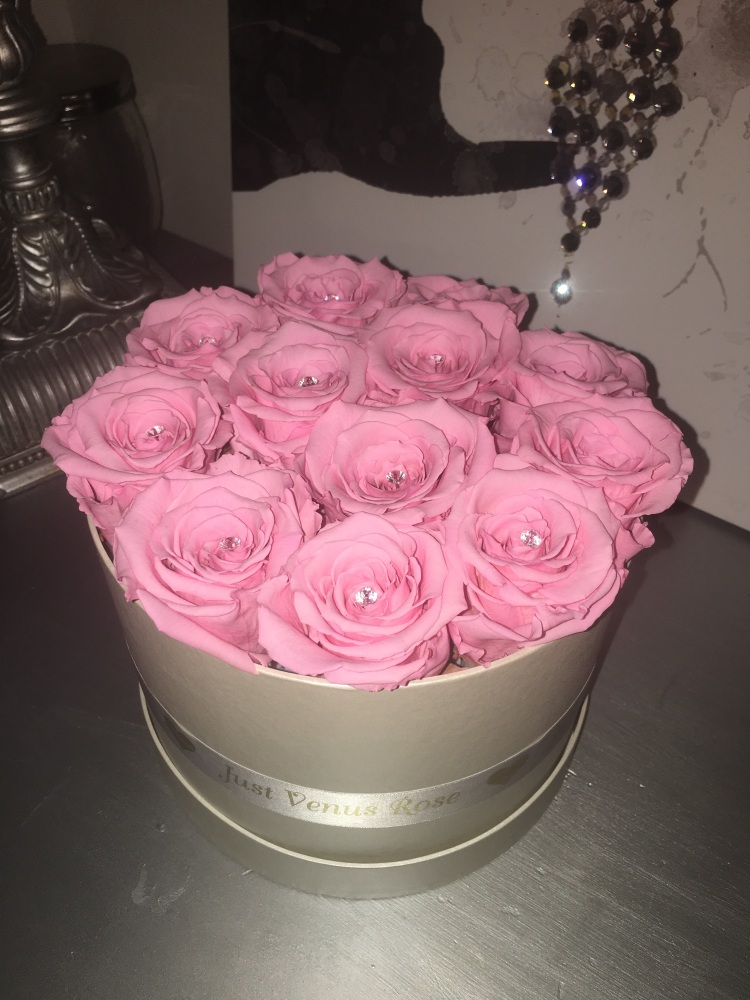 baby pink infinity roses large box
