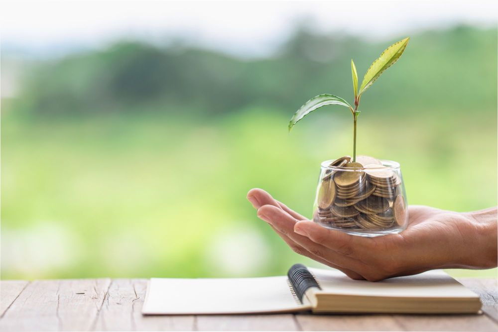 Hand holding a glass filled with coins with a plant growing out of the coins