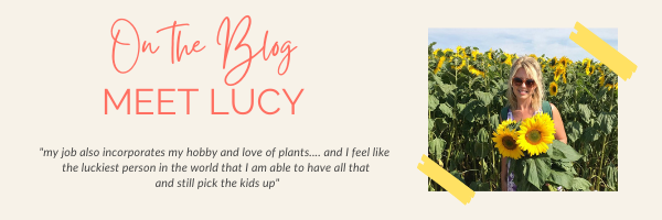 Lucy on the blog - newsletter