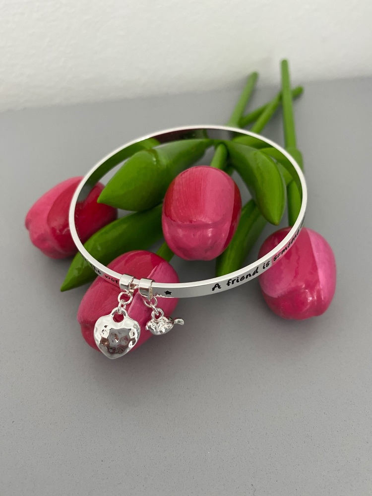 Silver Friendship Bangle with Heart and Robin Charms