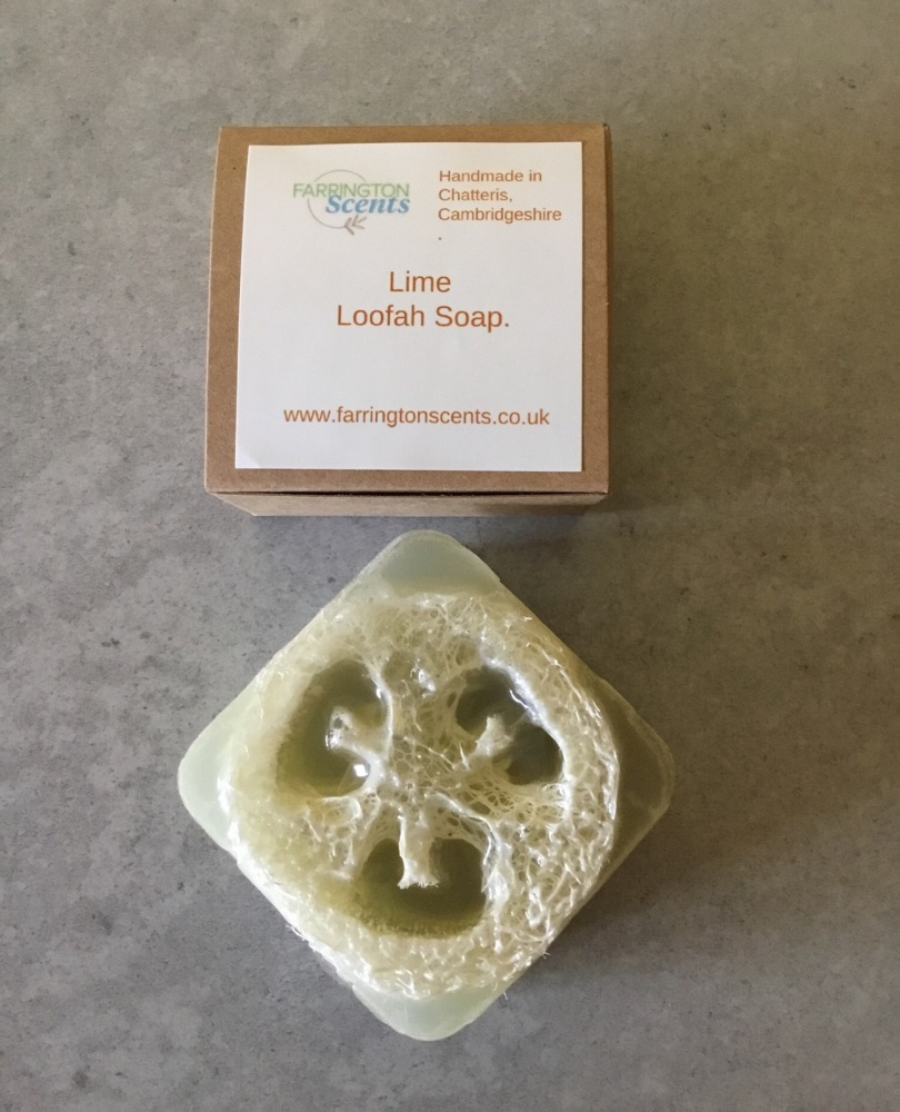 Lime Loofah Soap